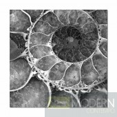 Modrest Golden Ratio Photo On Canvas