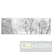 Modrest Purity 3-Panel Photo On Canvas