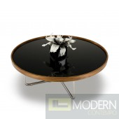 Modrest 226E - Modern Brown Black Coffee Table