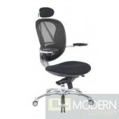 Kaysen Ergonomic Mesh Office Chair