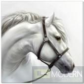 Premium Acrylic Wall Art White Horse-SB-61184