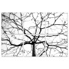 Modrest Winter Branches 6-Panel Photo on Canvas