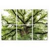 Modrest Tree Of Life 6-Panel Photo On Canvas