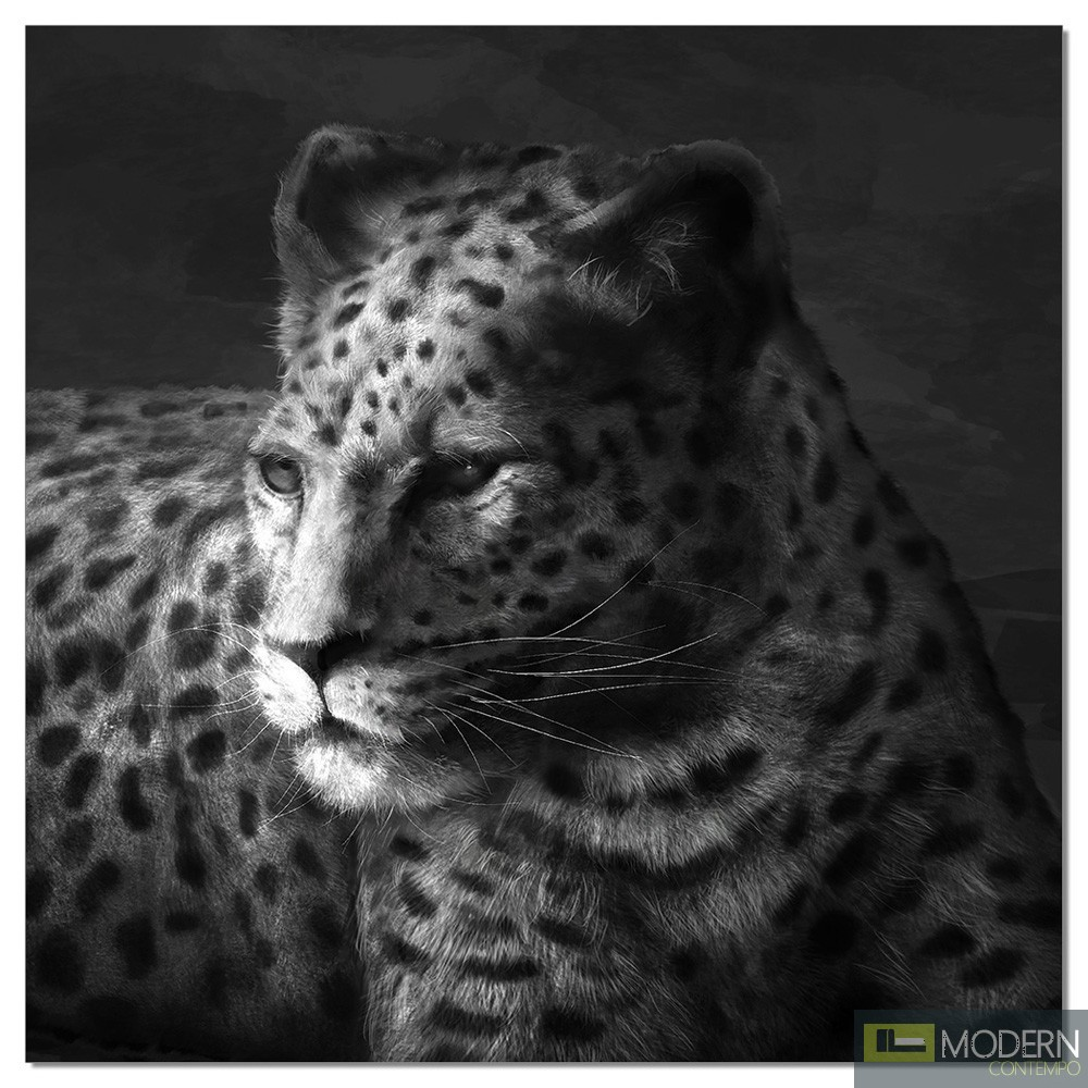 Premium Acrylic Wall Art Cheetah-SB-61253A