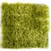 Modrest Mantova Modern Green Large Area Rug